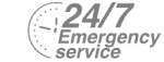 24/7 Emergency Service Pest Control in Friern Barnet, New Southgate, N11. Call Now! 020 8166 9746